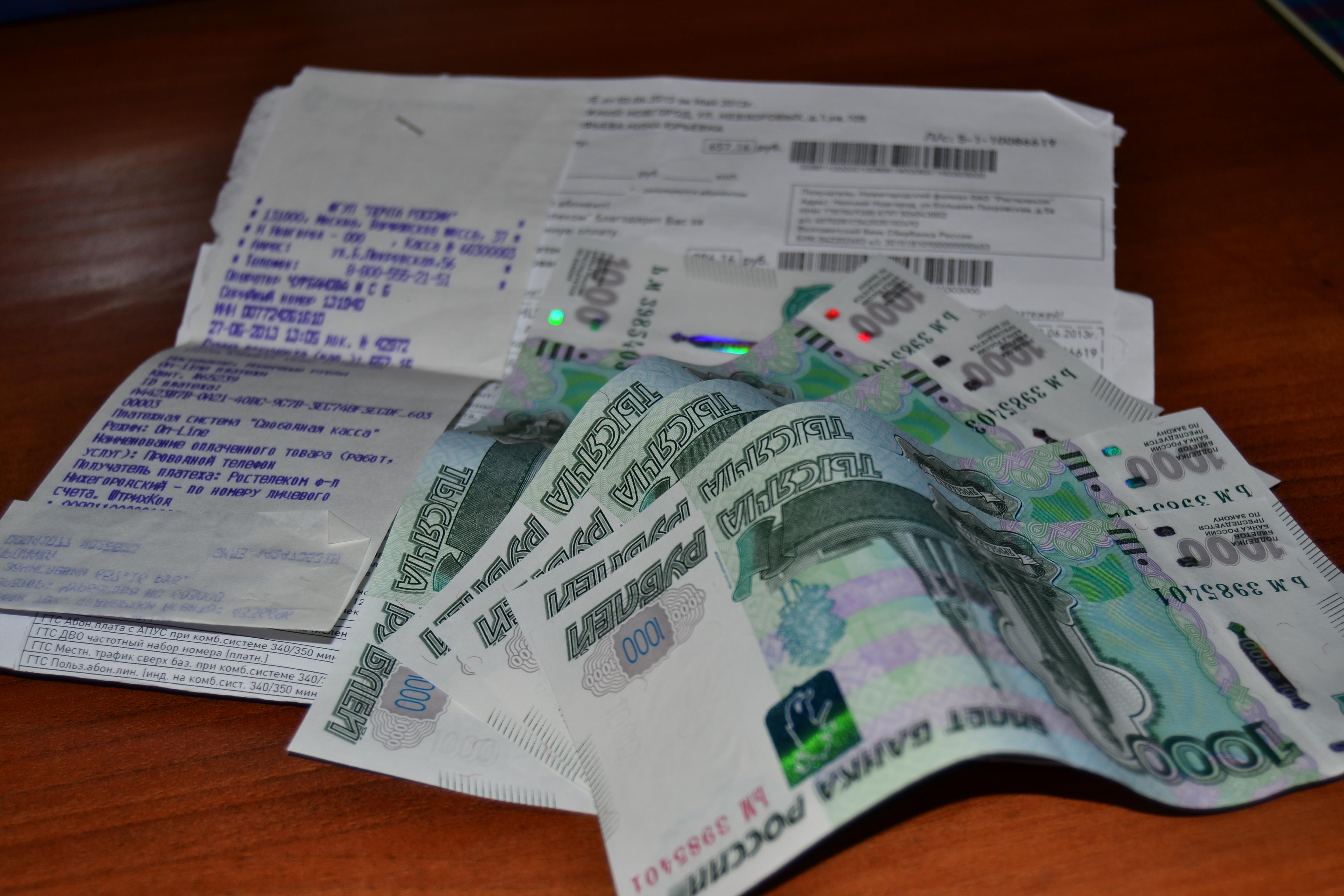 Коммунальные долги россиян выросли за период пандемии - фото 1